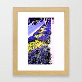 Intense purple. Framed Art Print