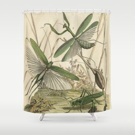 Grasshopper & Mantis Shower Curtain
