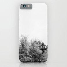 Snow Branches iPhone 6s Slim Case