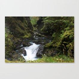 RUTHCREEK Canvas Print