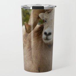 Big horn sheep in Jasper National Park   Alberta Travel Mug
