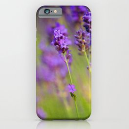 Textured background of lavender flowers iPhone Case