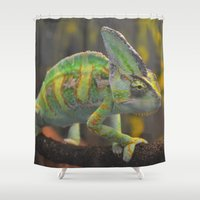 karma Shower Curtains featuring Karma Karma Karma by bphotography