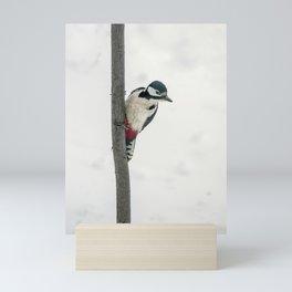 Knock, knock. Who's There? Woodpecker! Mini Art Print