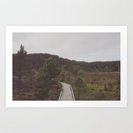 Across the moor Art Print