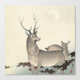 Deer by Ohara Koson Canvas Print