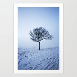 Misty Blue Art Print