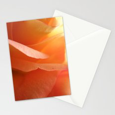 Two-Tone Roses #9 Stationery Cards