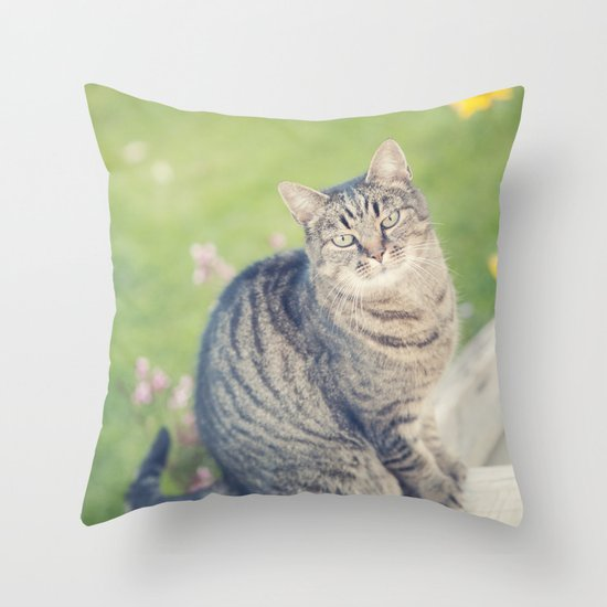 In a past life... Throw Pillow