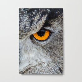 NIGHT OWL - EYE - CLOSE UP PHOTOGRAPHY - ANIMALS - NATURE Metal Print