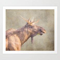 Mr Moose Art Print
