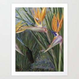 Bird of Paradise flowers and Hummingbirds still life painting Art Print