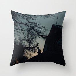 Coles Bay Summer Night Throw Pillow