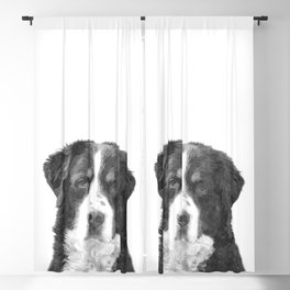 Black and White Bernese Mountain Dog Blackout Curtain