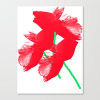 poppies Canvas Prints featuring Poppies by Vitta