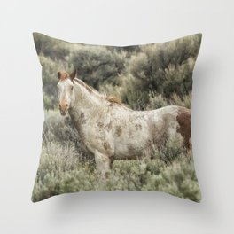 South Steens Stallion Alone on the Range Throw Pillow