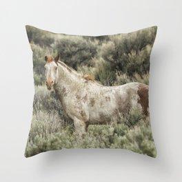 South Steens Stallion Alone on the Range Throw Pillow