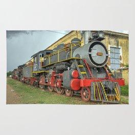 Trinidad Steam Rug