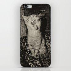 Kitty Yawns iPhone & iPod Skin