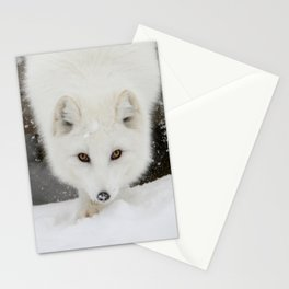 Fixated Stationery Cards