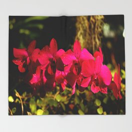 Lovely As An Orchid Throw Blanket