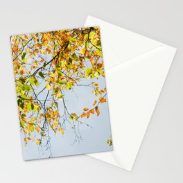 Northwoods Stationery Cards