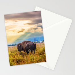The Great American Bison Stationery Cards