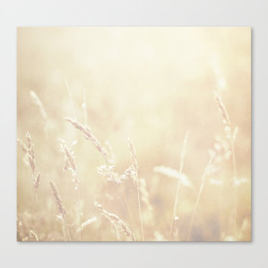 Lets make hay whilst the sun shines  Canvas Print