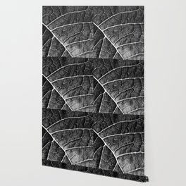 LEAF STRUCTURE no2a BLACK AND WHITE Wallpaper