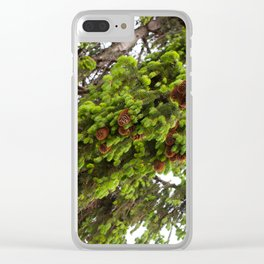 Large spruce fresh shoots Clear iPhone Case