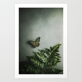 Butterfly and fern tango Art Print