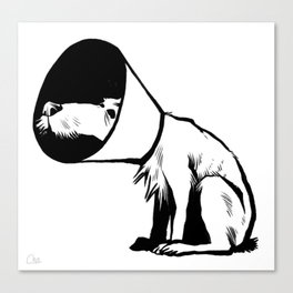Cone of shame Canvas Print