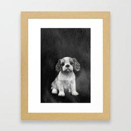 King Charles Spaniel puppy Framed Art Print