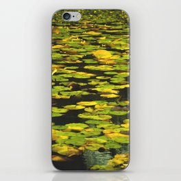Water Lilly  iPhone Skin
