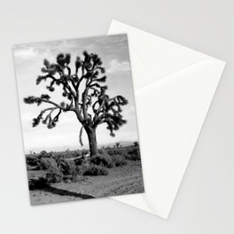 Joshua Tree, Mojave Desert 1904 Stationery Cards
