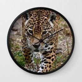 Prowling Jaguar Wall Clock