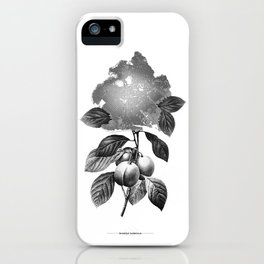 Brooklyn Botanicus iPhone Case