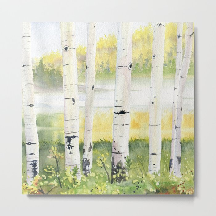 Behind The Birch Trees Metal Print