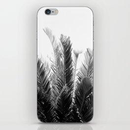 Tropical Leaves Dream #3 #tropical #decor #art #society6 iPhone Skin