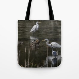 Three Great Egrets Among the Ducks, No. 2 Tote Bag
