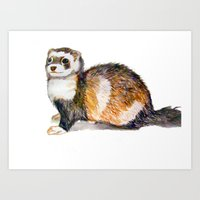 ferret Art Prints featuring Ferret by Tesseract
