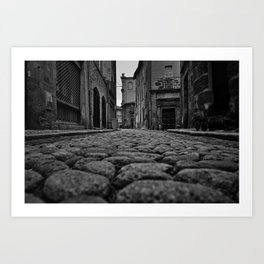 Old Cobblestones Art Print