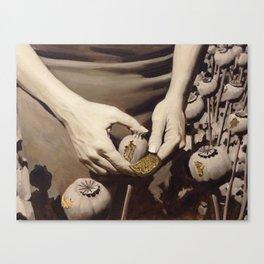 Woman hands Canvas Print