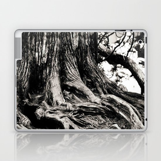 Beauty in the old Laptop & iPad Skin