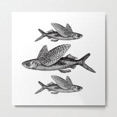 Flying Fish | Black and White Metal Print