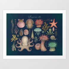 Aequoreus Vita Art Print