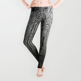 Snow Mountain Winter Forest V - Nature Photography Leggings