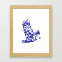 Eagle Rider Framed Art Print