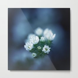 Spring in our Minds. Metal Print