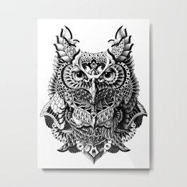 Century Owl Metal Print